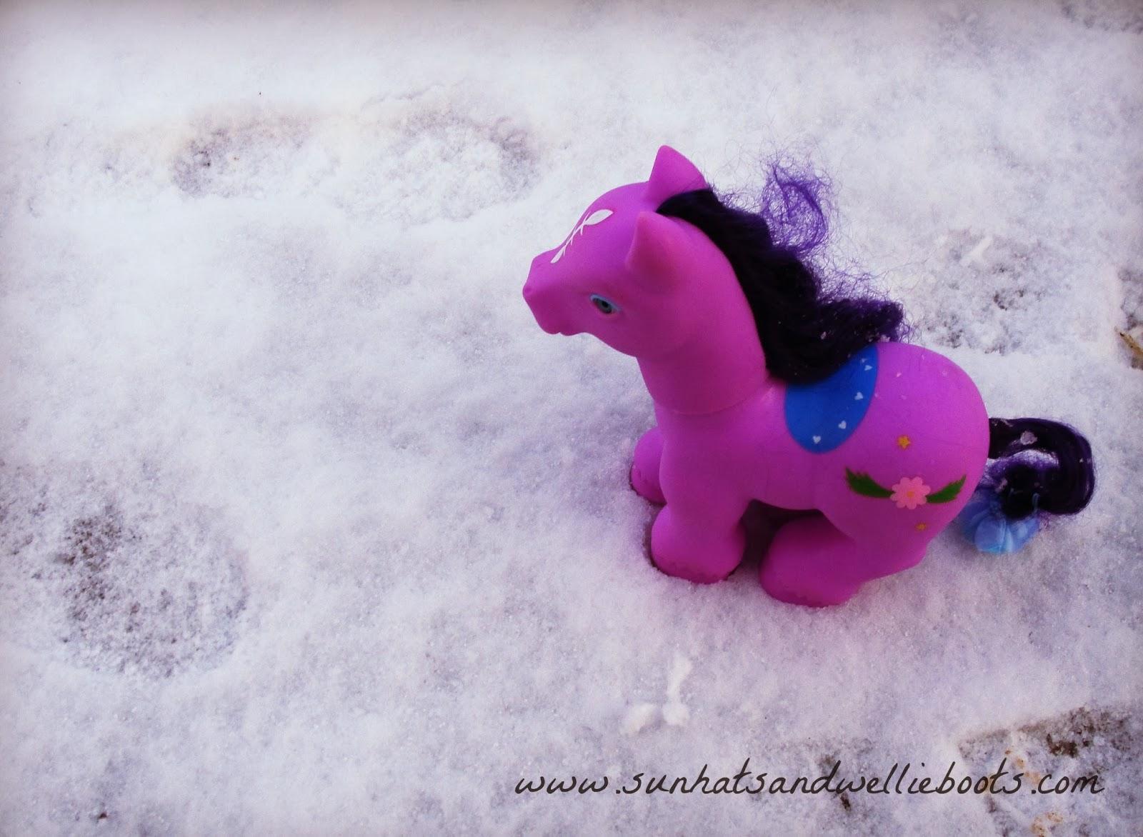 snow horse footprint