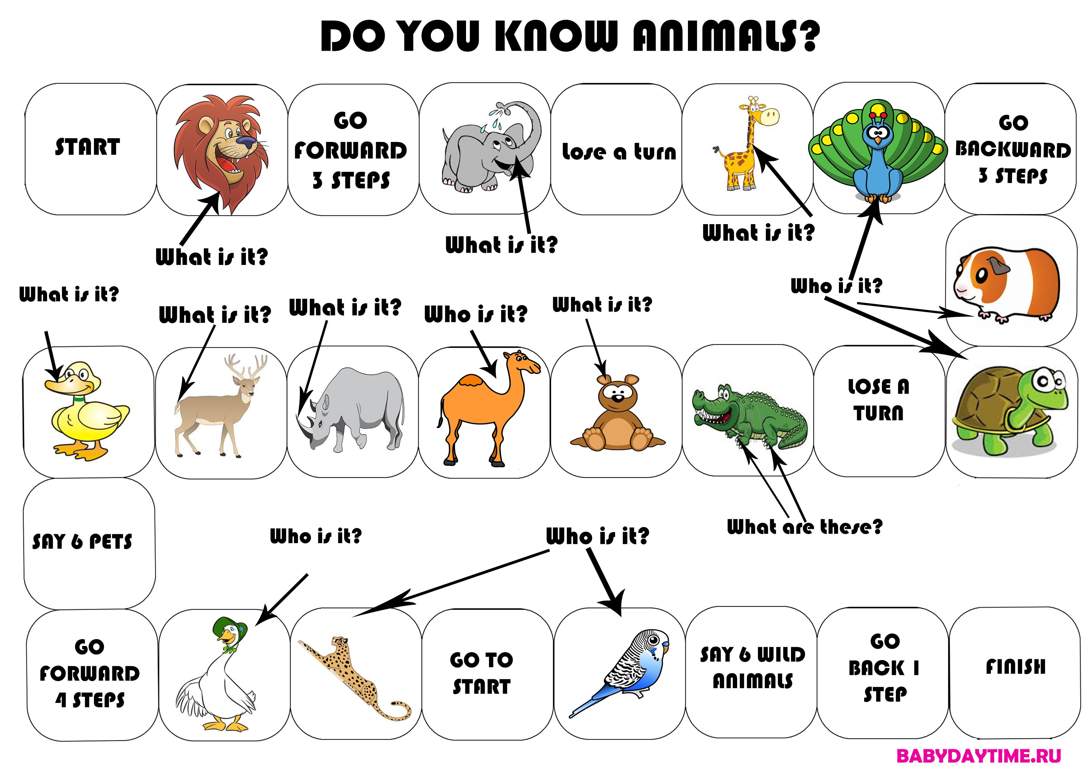 Настольная игра: Do you know animals?