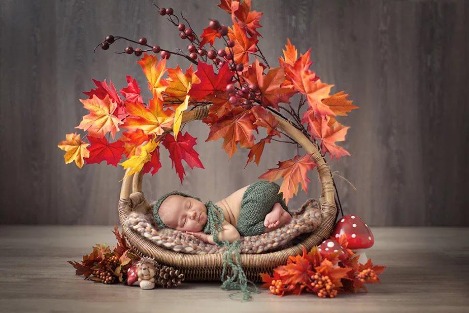 осенний младенец в листьях